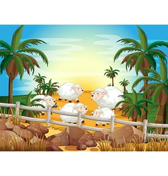 Sheep and farm vector
