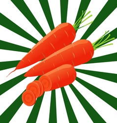 1 carrots sectional vector