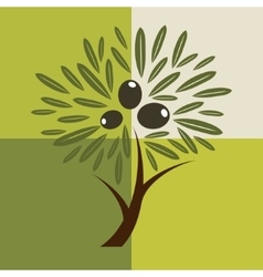 Olive tree background vector