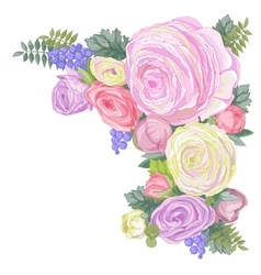 Gentle ranunculus flowers vector