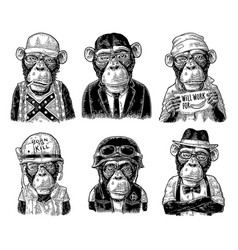 Monkey in human clothes redneck businessman vector