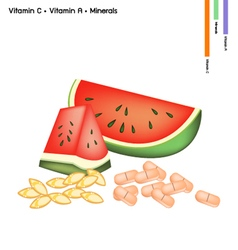 Watermelon with vitamin c and vitamin a vector