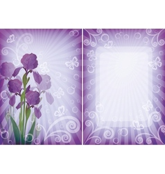 Flower background for greetings card vector image