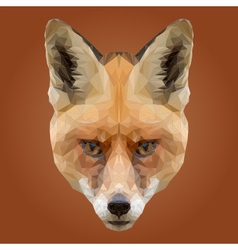 Abstract Low Poly Fox Design vector image