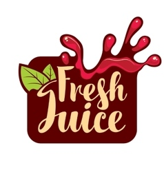 Spray of fresh juice vector