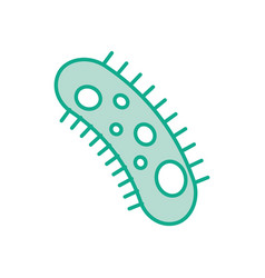 study of bacteria icon vector image vector image