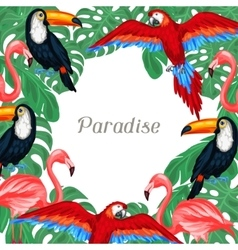Tropical birds background design with palm leaves vector