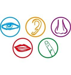 Five senses icon set - vector