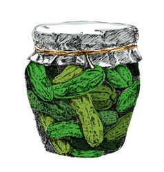 Pickled cucumbers in brine and jar vector