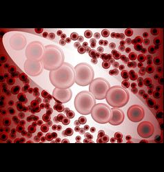 red blood cells under magnification vector image vector image