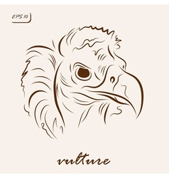 Black vulture vector image