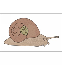 Digital snail with a small leaf vector