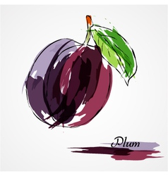 Plum fruit vector
