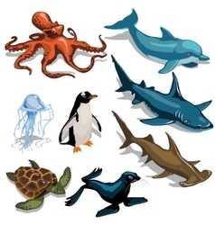 Fish dolphin seal and other members of deep sea vector