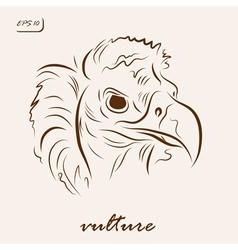 Black vulture vector