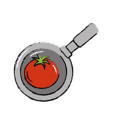 Tomato vegetable inside skillet pan vector