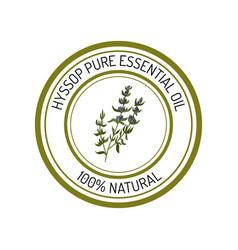Hyssop essential oil label aromatic plant vector