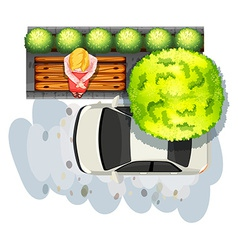 Sidewalk and car vector