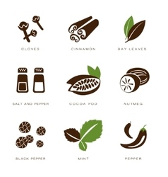 Spices condiments and herbs vector