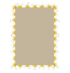 White frangipani flowers frame2 vector image vector image