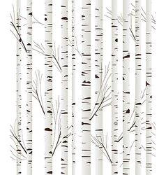 Birchwood background vector