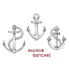 Vintage marine anchors with ropes vector
