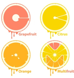 Citrus icons vector