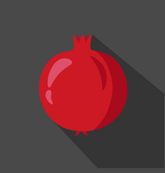pomegranate cartoon flat icon dark background vector image vector image