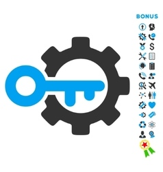 Key options flat icon with bonus vector