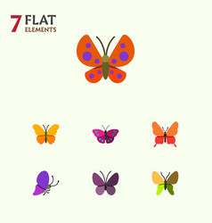 Flat monarch set of moth archippus butterfly and vector