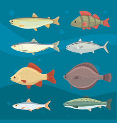 isolated river fish set of freshwater sea cartoon vector image vector image
