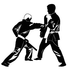 Image of martial arts athletes vector
