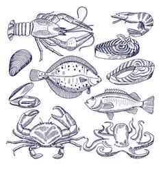 Sea food for restaurant vector
