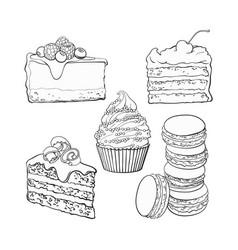 set of desserts - cupcake chocolate and vanilla vector image