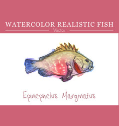 Hand painted watercolor edible fish design vector
