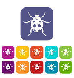 ladybug icons set vector image