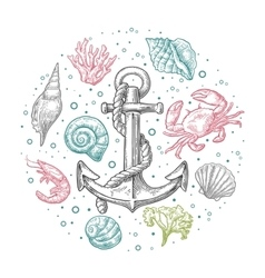 Set sea shell coral crab shrimp and anchor vector image vector image