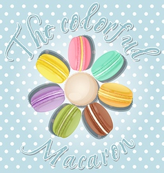 Collection of macaron in flower shape vector
