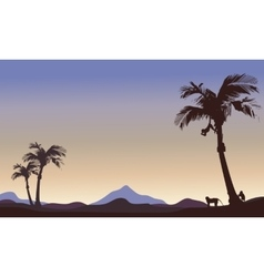 Silhouette of monkey and palm landscape vector