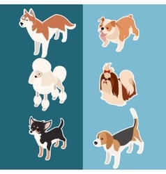 Collection of isometric dogs3 vector