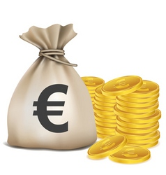 Euro bag coins vector