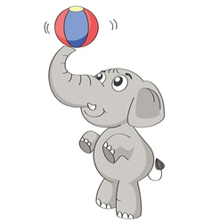 an elephant vector image vector image