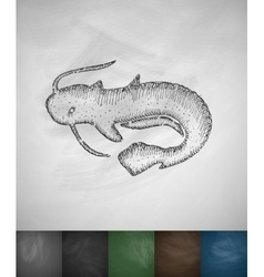 Catfish icon vector
