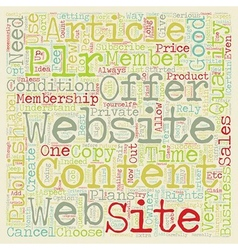 How To Choose A Good PLR Website text background vector image