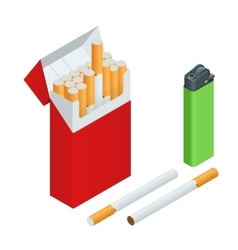 Lighters cigarettes pack cigarette isolated vector image