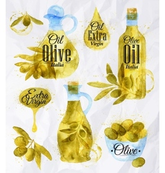 Watercolor drawn olive oil vector image vector image