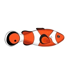 Bright red colored fish vector