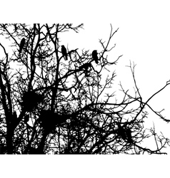 Crows and nests on branches of tree vector