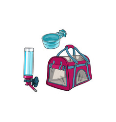 pet travel carrier bag feeding bowl and vector image vector image