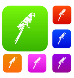 brazilian parrot set color collection vector image